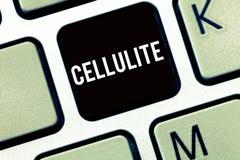 Знак текста показывая целлюлит Сало схематического фото настойчивое subcutaneous причиняя dimpling кожи стоковые изображения
