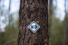 Знак 15 указывая к праву стоковое фото