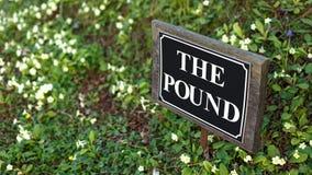 Знак улицы фунта с предпосылкой цветка стоковые фотографии rf