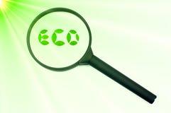 знак фокуса eco шлиха зеленый увеличивая Стоковые Изображения