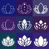 Знак цветка: силуэт лотоса для студий йоги Стоковые Фотографии RF