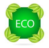 знак eco Стоковые Изображения