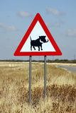 Знак Warthogs опасности - Намибия Стоковая Фотография