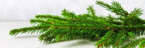 знамена Ветвь мех-дерева лежит на белой таблице Украшение рождества на светлой предпосылке стоковое изображение
