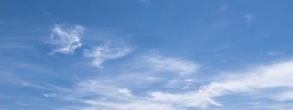 Знамена голубого неба принятые в воздух стоковые изображения rf