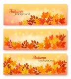 3 знамени продажи осени с красочными листьями иллюстрация вектора