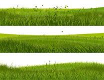 Знамя абстрактной травы луга. бесплатная иллюстрация