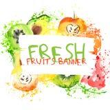 Знамя акварели свежих фруктов Яблоко, цитрусы, авокадо и qiwi Watercolored в одном знамени с брызгают Здорово бесплатная иллюстрация