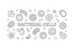 Знамя бактериальных клеток горизонтальное Иллюстрация плана вектора иллюстрация штока