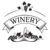 Знамя для винодельни или вина и корзина с виноградинами Стоковое фото RF