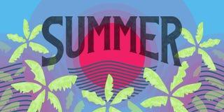 Знамя лета горизонтальное с красным солнцем и зелеными листьями ладони Стоковое Изображение RF