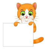 Знамя котенка Стоковая Фотография RF