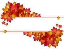 Знамя осени с листьями. Стоковые Изображения RF