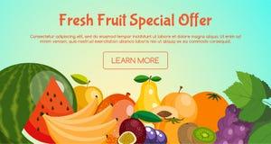 Знамя особенного предложения свежих фруктов с плодами как апельсин, арбуз, банан, киви, виноградины, слива, груша, персик, манго иллюстрация штока