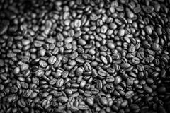 Знамя предпосылки кофе Острое разбивочное изображение и расплывчатые defocused углы Абстрактное знамя кофе Стоковая Фотография