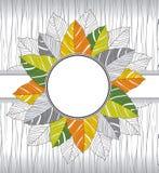 Знамя причудливых листьев Стоковое фото RF