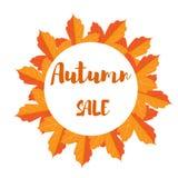 Знамя продажи листвы осени Стоковая Фотография
