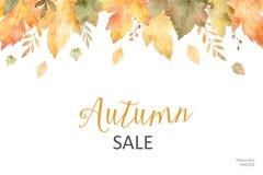 Знамя продажи осени акварели листьев и ветвей изолированных на белой предпосылке Стоковая Фотография RF
