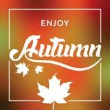 Знамя/плакат вектора приветствию сезона осени Стоковое Фото