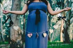 Знамя сердца материнства Стоковые Изображения