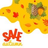 Знамя скидки продажи осени с конусом сосны, жолудем и листьями осени стоковое фото rf