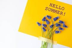 Знамя с голубым летом цветков здравствуйте стоковое изображение