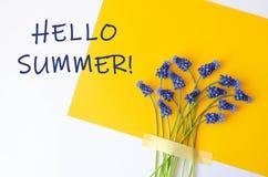 Знамя с голубым летом цветков здравствуйте стоковое фото