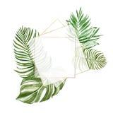 Знамя тропических листьев акварели геометрическое с изолированным космосом для текста, Золотая рамка с листвой бесплатная иллюстрация