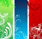 знамя флористическое Стоковое фото RF