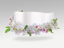 знамя цветет весна Стоковые Фото