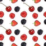 Знамя ягод картины руки отметки вычерченное изолированное безшовное Сделанный эскиз к вектор еды отметки красочная поленика, клуб иллюстрация вектора