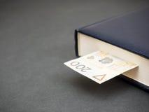 Знание оплачивает (польская версия) Стоковые Изображения RF