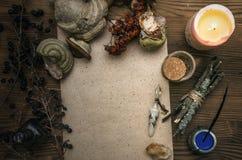 Знахарь shaman колдовство Волшебная таблица альтернативный bamboo поднос спы микстуры деталей ginkgo biloba ванны Стоковая Фотография RF