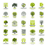 Значка леса силуэта зеленого цвета перемещения дерева линия вектор собрания значка логотипа внешнего coniferous естественная спру Стоковые Фото