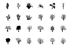 Значки 4 вектора деревьев Стоковые Изображения
