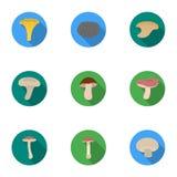 Значки гриба установленные в плоском стиле Большое собрание иллюстрации запаса символа вектора гриба иллюстрация вектора