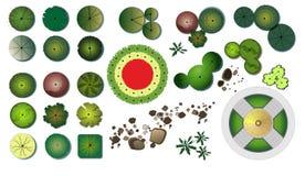 Значки дизайна деревьев сада стоковые изображения rf