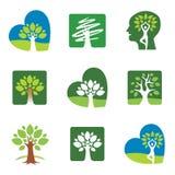 Значки дерева Стоковая Фотография RF