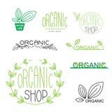 Значки естественных, органических, vegan и логотип конструируют Стоковая Фотография RF
