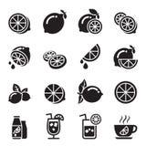 Значки лимона Стоковые Фотографии RF