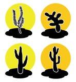 Значки кактуса в пустыне иллюстрация штока