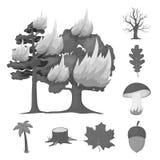 Значки леса и природы monochrome в собрании комплекта для дизайна Иллюстрация сети запаса символа вектора жизни леса Стоковая Фотография RF