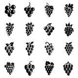 Значки логотипа вина плодоовощ виноградины установили, простой стиль иллюстрация штока