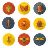 Значки насекомых плоские Стоковое Изображение RF