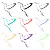 Значки птицы колибри Стоковые Фотографии RF