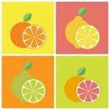 Значки цитрусовых фруктов Стоковая Фотография
