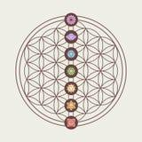 Значки Chakra на священном дизайне геометрии иллюстрация штока