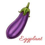 Значок баклажана vegetable изолированный эскизом Стоковое Фото