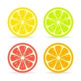 Значок вектора куска цитрусовых фруктов иллюстрация вектора