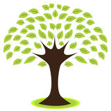 Значок дерева Стоковые Изображения RF